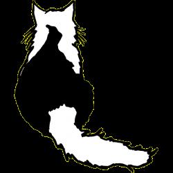Värmlands Kattklubb